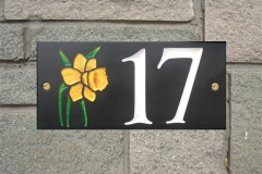 17with1Daff-L