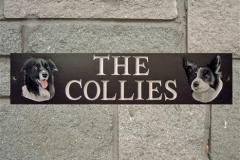 TheCollies-L