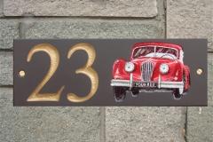 Car1-L